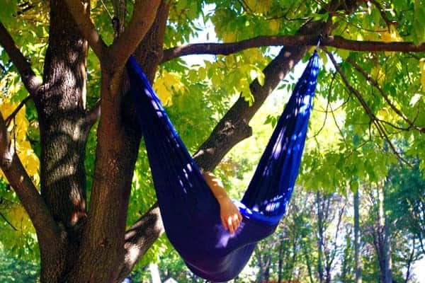 Do Hammock Hurt Trees