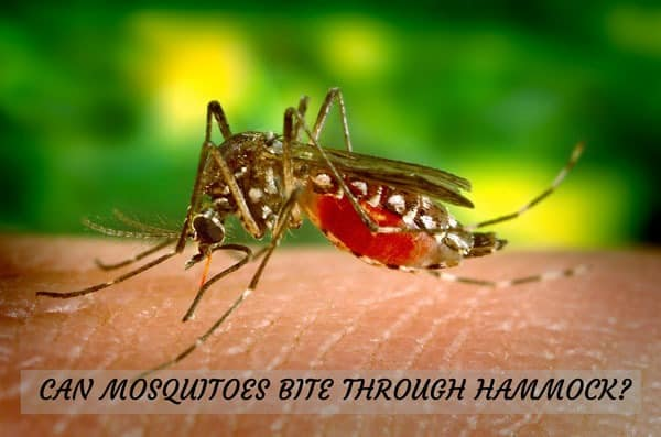 can mosquitoes bite through hammock